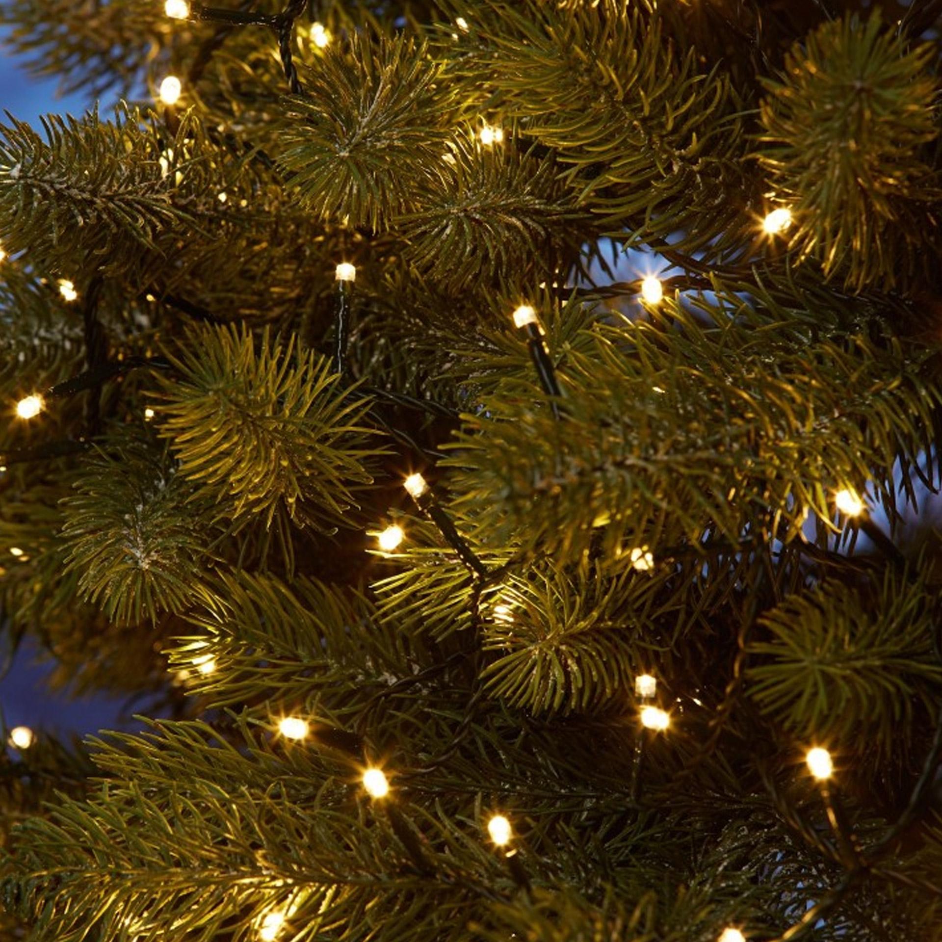 led-lichterkette mit 80 lichtern in grün zum schnäppchenpreis innen und außen geeignet im änischen bettenlager
