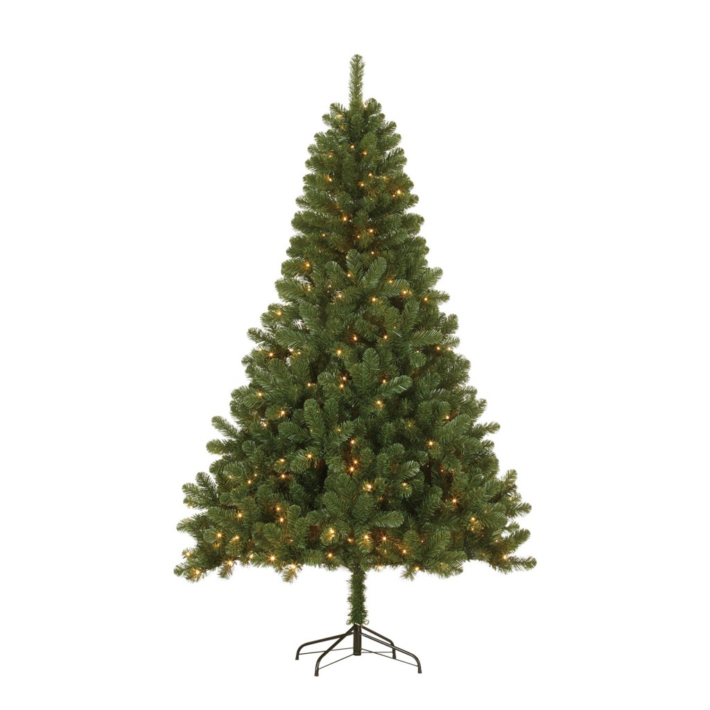 weihnachtsbaum paul von mömax zum schnäppchenpreis 155 cm hoch mit led-beleuchtung