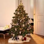 24% sparen – Weihnachtsschmuck-Set BJOUTERIE – nur 189€